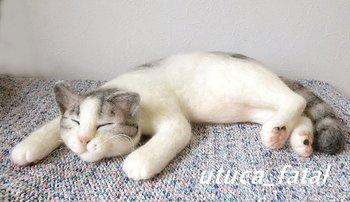 猫ちゃんの表情に癒されます♡スヤスヤ眠るポーズも本物みたいで、寝息が聞こえてきそうです♪