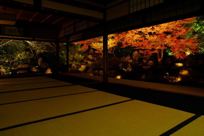"""「圓徳院」のハイライトは、""""秋の特別拝観""""頃。ライトアップされた北庭は、燃えるような美しさです。"""