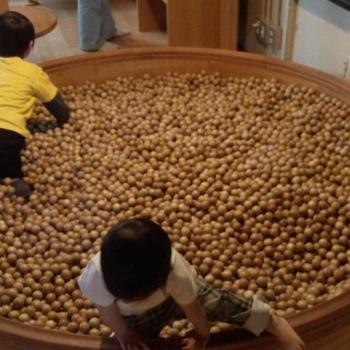 こちらは「おもちゃのもり」にある木のボールプール。小さな子だけでなく、大人も楽しくなっちゃうのだとか。