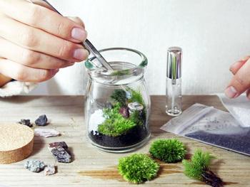瓶の中に小さな世界を作り上げるテラリウム。こちらは苔の日本庭園を手づくりできるキットです。材料が全部揃っているので、初心者さんでも気軽に楽しめます。