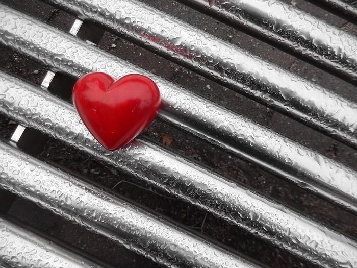 冷たい雨のなかに置き忘れたわたしのココロ。迎えにいって、やさしく解きほぐしてあげてください。