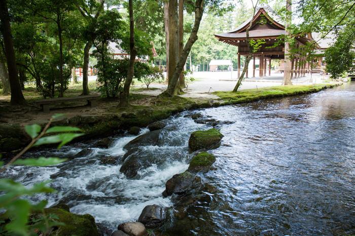"""""""ならの小川""""は『小倉百人一首』にも詠まれています。   「風そよぐ ならの小川の 夕暮れは    みそぎぞ夏の しるしなりける」  詠み人は、平安末期から鎌倉時代にかけて活躍した歌人・藤原家隆です。"""