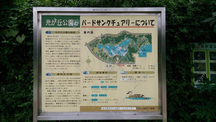 より野鳥に出会える機会がある場所を…という方は、自然公園やバードサンクチュアリを訪れてみましょう。湿地や川など鳥の生育に適した環境が整っており、より多くの鳥たちが見られるはず。こちらは東京都の、光が丘公園バードサンクチュアリ。池や樹林が造成された保全地域で、土・日・祝にオープンする観察舎では、備え付けの望遠鏡でバードウォッチングが楽しめます。