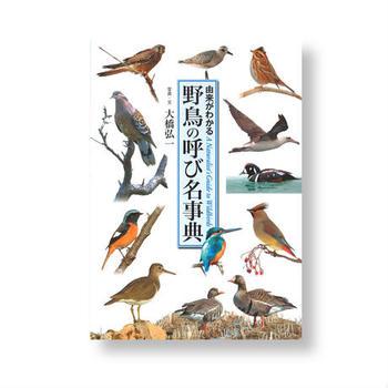 「今見た鳥はなんという鳥?」そんな疑問にすぐに答えてくれるのが野鳥図鑑。ただ眺めているだけでも楽しい本です。