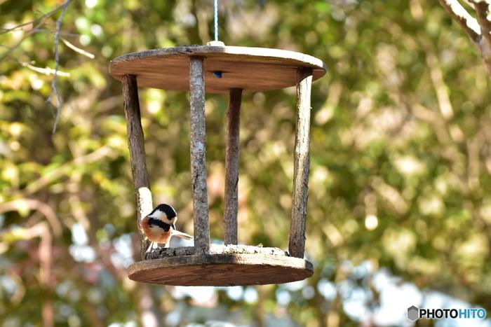 バードフィーダーはホームセンターやペットショップなどで購入できるほか、身近なもので手作りする方もたくさんいます。屋根をつけたり小枝で格子を作ることによって、カラスなど大きな鳥に餌を食い荒らされるのを防ぎます。