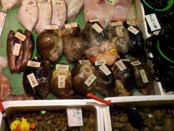 函館市民の台所と呼ばれる「中島廉売」は、昭和初期にまで歴史を遡る昔ながらの商店街。鮮魚店では店頭に並ぶ魚の種類の豊富さと安さにびっくり。立ち食い寿司は安くて美味い!と密かな人気。たい焼きやクレープなどの甘味もお楽しみです。