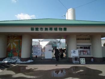 湯の川温泉にほど近い、函館市熱帯植物園。温室には約30種・300本の熱帯の花々が咲き誇ります。園内には遊具やちびっこ広場、ミニウサギとのふれあいコーナー、温泉熱を利用した足湯などがあり、子どもたちも楽しく遊べます。