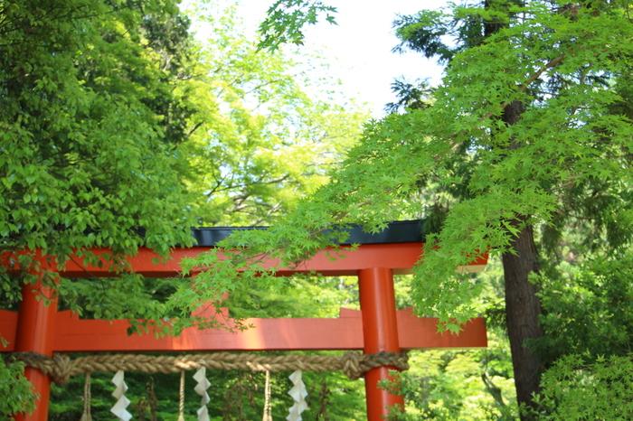 「上賀茂神社」の東、約500mの場所に位置する、摂末社「大田神社」。