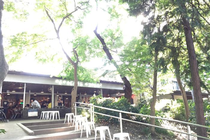 井之頭公園内には幾つかお店がありますが、特に人気なのがこちらの「ペパカフェ・フォレスト(pepacafe FOREST) 」。タイ料理が味わえる人気のカフェです。うっそうと茂る緑を眺めながらいただく、ピリ辛タイ料理が心に元気をチャージ。  映画やドラマのロケ地としても人気で、吉祥寺を舞台にした『グーグーだって猫である』にも登場しました。