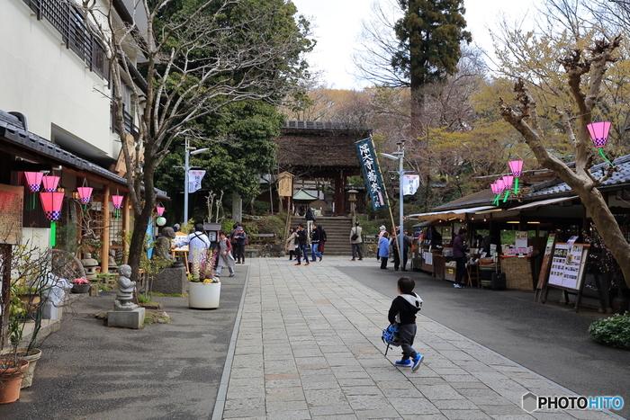 神代植物公園に面した「深大寺(じんだいじ)」も忘れず訪れましょう。広い境内は、名物のそば店や茶屋、陶芸のお店が立ち並び、どこか江戸の雰囲気が残ります。