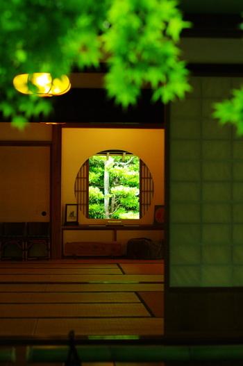竹でお馴染みの報国時の近くにある浄妙寺。こちらもアジサイで有名なお寺なんです。