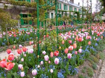 家の前には色とりどりのチューリップが。まるで客人を出迎えるかのように、お行儀良く列になって咲き誇る様子が見事です。