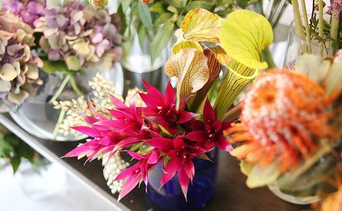 ドイツ語で「香り」を意味する「duft」と名付けられたお花屋さん。営むのは、中目黒の花屋さんfarverから独立した若井ちえみさんです。真ん中のテーブルにさまざまな花を配置し、お花の表情を様々な角度から眺められます。「この子が気に入ったから連れて帰るわ!」といった感じにお花と対話したくなります。