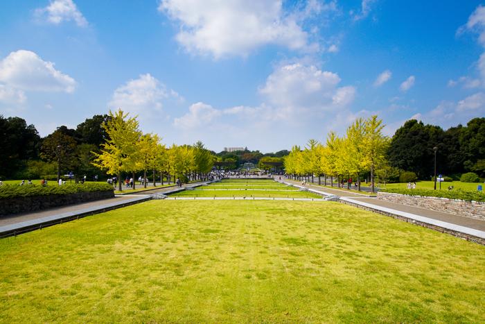 JR青梅線・西立川駅から徒歩約2分、JR中央線・立川駅から徒歩約10分の場所にある国立の大きな公園です。入場料金はかかりますが、1日で遊びつくせないほど大きく、レンタサイクルやボートハウスなど、カップルや子ども連れの家族に特におすすめの公園です。