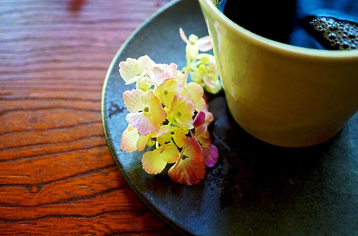 いかがだったでしょうか?花の町鎌倉のアジサイ。是非観に来てくださいね♪