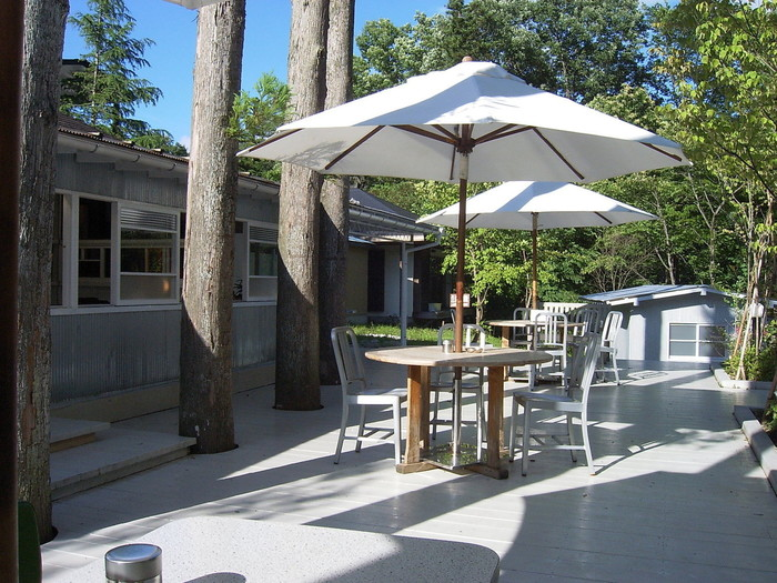 木々を愛でることができる開放的なテラス席もあります。混雑していない平日はペット同伴もOKなのがうれしいところ。