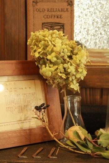 フラスコを花瓶代わりにしても面白いですね。シンプルなのでアジサイのかわいらしさが引き立ちます。