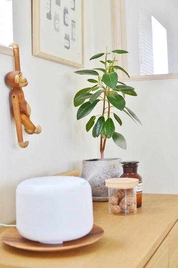 食卓で食べ物を載せるだけではなく、雑貨としても飾って楽しんでも。こちらは加湿器の水漏れ対策用にしたそうですが素敵ですよね。