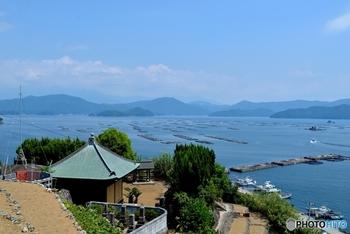 「パクチー醬油」が生まれたのは、自然豊かな愛媛県宇和島市。愛媛で育った国産パクチーと、宇和島で伝統的なお醤油作りを続けている旭醤油醸造場が出会って作られました。