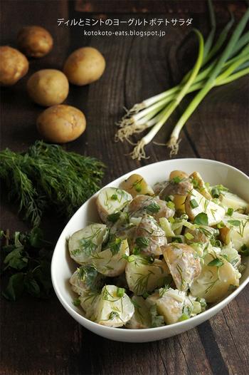 ハーブとヨーグルトを使った爽やかな風味のポテトサラダ。ヨーグルトを使うことで、マヨネーズよりもあっさり仕上がります。マスタードを加えるのもポイント!