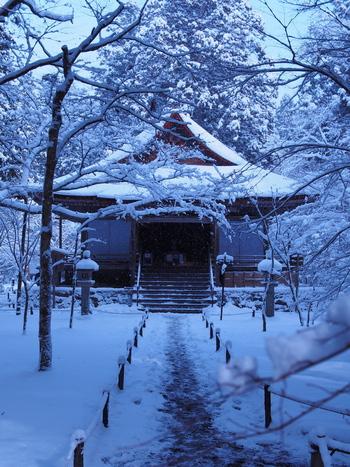 深い緑に包まれた極楽往生院も素敵ですが、しんしんと降り積もる雪にすっぽりと覆われる冬の極楽往生院の美しさは格別です。