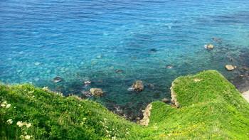 北海道には珍しい南国の海のような鮮やかなブルーの海。これが積丹ブルーです。絶景を見ながらの美味しいしゃこたんブルーソフトは最高!観光に訪れる際には、他にも積丹ブルーをイメージしたラムネなどの商品もありますので、是非チャックして下さい。