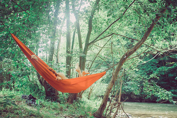 自然と触れ合う機会が減っている現代の暮らしでは、人は本能的に「癒し」を求めて森林などに出かけているそう。視界にはグリーンが広がり、せせらぎや鳥の声に耳を傾け五感で自然を感じる。おそらく、誰にとっても心地よい空間ですよね。