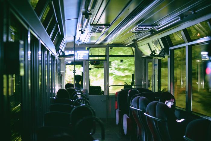 初夏の時期には、叡山電車が市原~二ノ瀬間にある通称「もみじのトンネル」でライトアップを行っています。貴船口から乗車して出町柳まで。その間に、もみじのライトアップを観賞します。