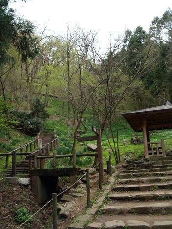 園内はとても広く、遊歩道の途中にこのような休憩所もあります。 風景を楽しみながらゆっくり歩いて、無理なくカタクリの園へ向かえますね。