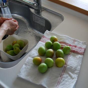 【材料】 ・南高梅 1kg ・ホワイトリカー 1.8L ・氷砂糖 1kg ・4.0Lの保存瓶  まずは青梅をやさしく水洗いし、たっぷりの水に1~2時間程度つけてアク抜きをします。(南高梅の場合は水につけておく必要はないのだそう)