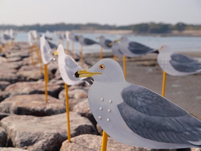 海辺にたくさん並んだカモメ。こちらは実は風を見るための装置だそう。風がよく吹く佐久島ならではの作品。