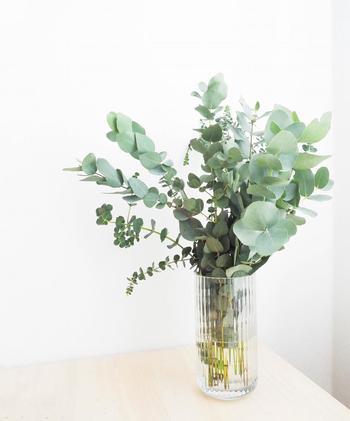 心を和ませてくれるインテリアの素敵なアクセント、生花。せっかくの癒しの植物も、花瓶の水が濁っていたら台無しです。  朝起きたら、花瓶をざっと洗って水をかえてあげましょう。茎が傷んでいたり、花が弱っていたら茎をカットして水揚げしてあげると完璧です。