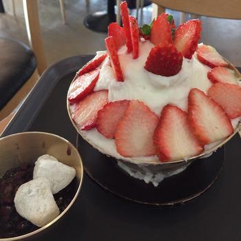 韓国のかき氷もとっても美味しいんですよ。韓国に旅行に来た際には、絶対にパッピンスを食べてみてくださいね。ここタルスダのピンスはふわふわの氷が絶品!!弘大にある行列ができるピンス専門店の1つです。