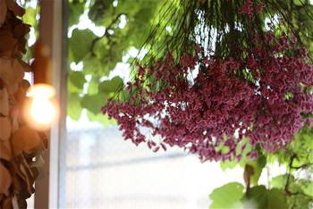 鮮やかな色合いや、香りの豊かさ… 今までの「ドライフラワー」の印象を覆すような物ばかりで、驚かされます。「枯れた花」と思っていましたが…彩りの美しさ…「花」の楽しみ方の新たなジャンルです。