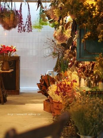 お店では、美しいドライフラワーが、迎えてくれます。こんなにたくさんのドライフラワーに出会うことは、初めてと思う方も多いはず。見たことが無いような花や葉など、個性あふれるドライ植物にかこまれ、しばらく言葉もなく佇んでしまいそうです。