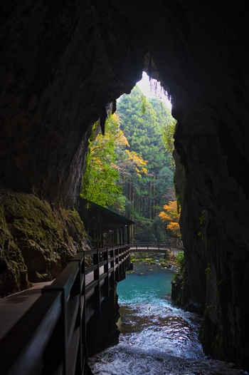 洞内は一年中約17℃くらいに保たれているので、いつ訪れても快適に観光できるのも魅力的。