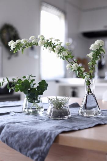 シンプルな硝子の花器に入れるだけでも様になるのが魅力です。食卓に飾れば、お家カフェ風に。自宅でパーティーの脇役として、これからどんなお料理が出てくるのか、ユーカリを見て和みつつワクワクしてきます。