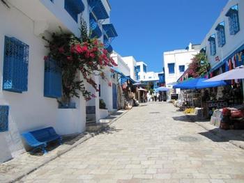 チュニジアで最も美しい街と謳われている「シディ・ブ・サイド」。チュニジアンブルーと呼ばれるトルコ石のような青色が窓やドアなどに使われていています。建物の扉にはイスラムの香り漂う模様が施されていてとても素敵。白壁が地中海の青に映えて見事な景観です。