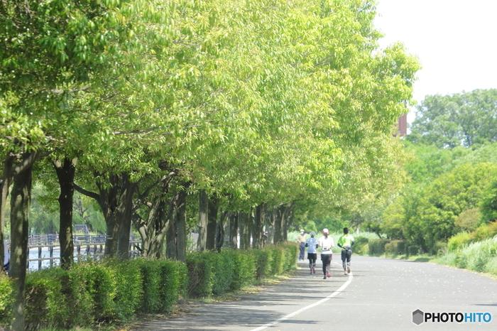 朝のすがすがしい空気を思いっきり吸って、ジョギングやウォーキングをはじめてみませんか? ハードルが高いという方は、散歩も◎ 朝、一定時間太陽の光を浴びることは、自律神経を整えるのにもとても効果的です。
