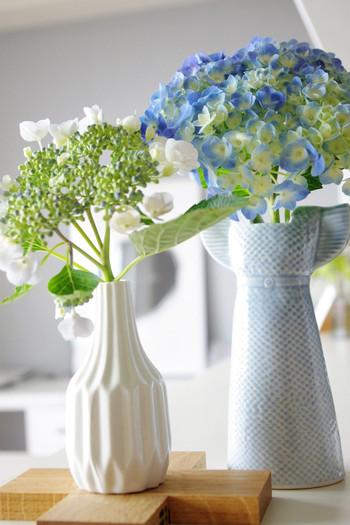 梅雨で思い浮かぶ花といえば、やはりアジサイではないでしょうか。紫や青い色をしたアジサイは、道端にあってもパッと目につきます。 花を咲かせながら色を変えていくので、花言葉は「移り気」。春や夏と違って、決して長くない梅雨時期によく合った花言葉ですね。