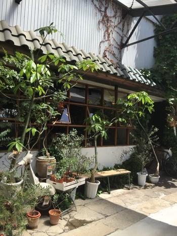 こちらは、御池通から一本入った瀟洒な袋小路にあるカフェ「CLAMP COFFEE SARASA」。サラサ各店に卸すコーヒー豆の焙煎がメイン業務のため、毎日飲んでも飽きない味に調節されたコーヒーが絶品で、コーヒー豆も購入可能です。 観葉植物・雑貨を扱う有名店「cotoha」と同じ敷地内にあり、ひなびた古い建物と緑豊かな空間は、ヨーロッパの片田舎に来たような旅行気分に浸れます。
