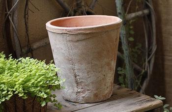 素焼き・プラスチック・陶器など、植木鉢にはいろいろな素材が揃っています。まずはお好みの物を選んでみましょう。ただし、小さい植物を大きな鉢に植えてしまうと、土の乾燥が進んで枯れやすくなります。植物に対してちょうどいいバランスの鉢を選び、成長に合わせて植え替えるようにして下さいね。