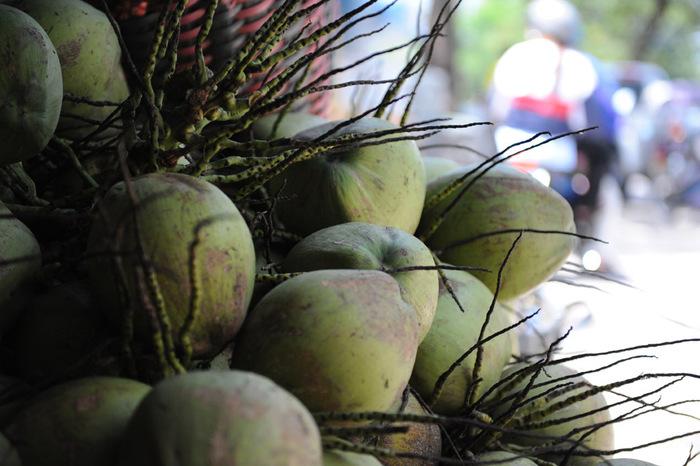 ヤシ油は、ココヤシの果実から採れるオイルです。洗浄力に優れているから、汗をかきやすい夏でも、さっぱりとした洗い心地を感じられそう。