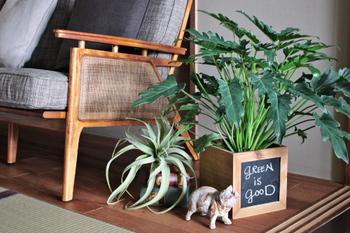 ボックスの中に植木鉢を入れたら、あとはお好きな場所に飾るだけ。他のインテリアとも統一感が出て、さらにお部屋に馴染みますね!