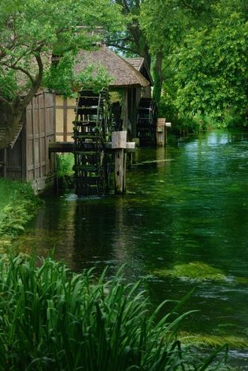 美しい水と豊かな緑。長野県・安曇野の観光スポット「大王わさび農場」を訪れて