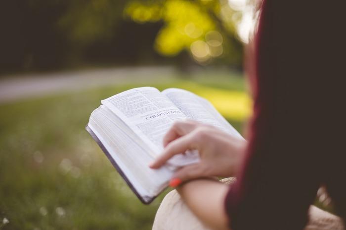 家の中だと、別のことに気がとられたり他のことを優先してしまって、なかなか落ち着いて読書をする時間がとれない・・・という方も多いのでは?そんな時は、本を持って公園に行ってみましょう。自然の多い公園でなら、リラックスしながら集中して読むことができ、いつもと違った時間が流れます。