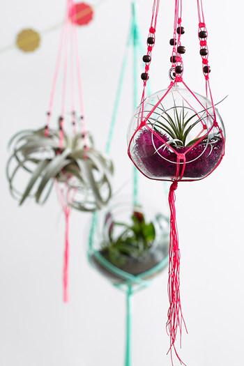 """観葉植物をつるして飾るハンギング""""プラントハンガー""""。色とりどりの紐で編めば、お部屋のポップなアクセントにもなりますね。"""