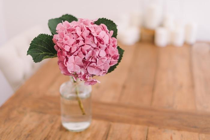 大きな丸みのあるアジサイはガラス瓶と相性バッチリ♪涼し気に飾れば、お部屋がぐんと明るくなります。