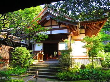 円覚寺の境内を奥へ登って行き、大方丈の奥にある如意庵。 入口でベルを鳴らし、係の方に案内してもらいます。庭に面した縁側席と畳のお座敷スペースがあります。