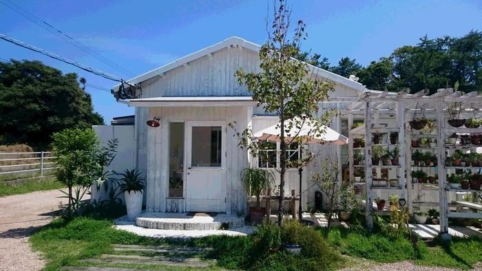 海辺に佇む白いお家がまるでドラマのセットのよう。爽やかな潮風を感じさせますね。